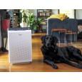 Oczyszczacz powietrza ZERO Winix z psem